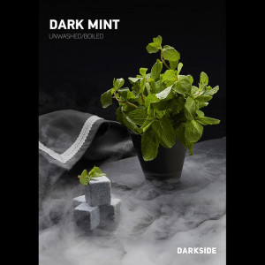 Табак для кальяна Darkside MEDIUM Dark Mint (мята) 100 гр.